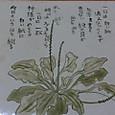 陶板(星野富弘氏の絵と詩)